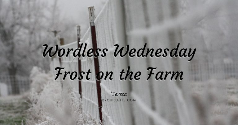 Wordless Wednesday – Frost On The Farm
