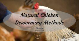 chicken deworming