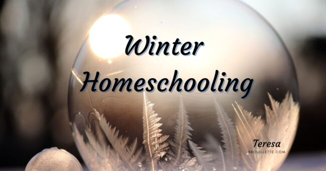 Winter Homeschooling
